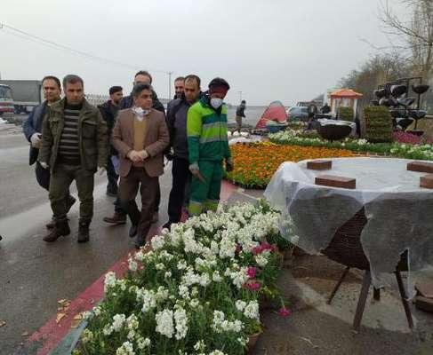تاکنون بیش از ۴ میلیون بوته گل فصلی در سطح شهر کاشته شده است/ تاکید  ...