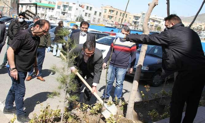 هیات مدیره سازمان به مناسبت روز درختکاری نهال غرس کردند