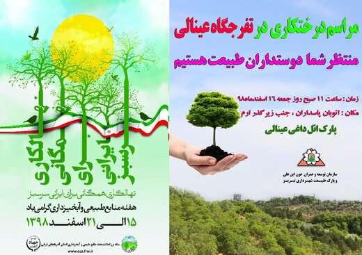 فضای سبز عینالی با ۱۵ هکتار جنگلکاری توسعه مییابد