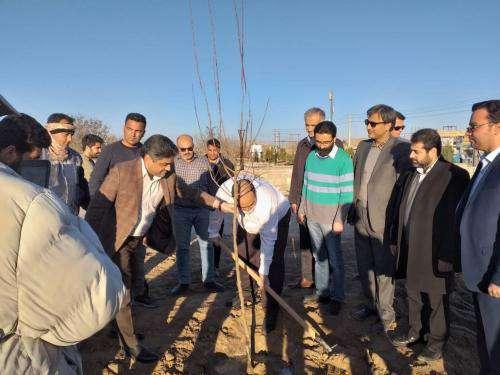 کاشت درخت از سوی شهردار مشهد در آرامگاه فردوسی