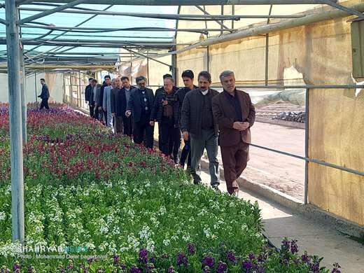 بازدید اعضای شورا و شهردار از گلخانه شهرداری تبریز و کاشت نهال