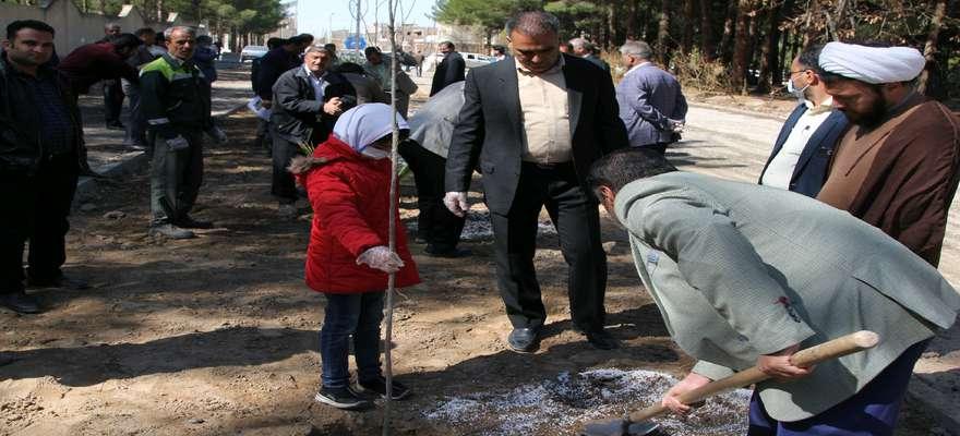 غرس 2000 اصله درخت به یاد 2000 شهید استان انجام می شود
