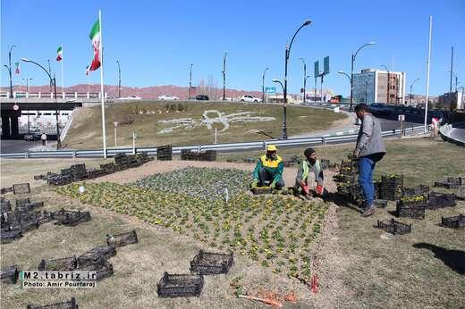 چشم انداز زیبای بهاره در میدان افلاک نما