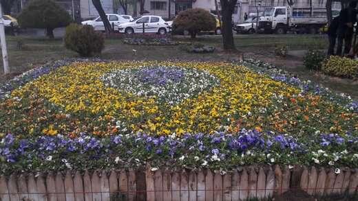 طراحی و اجرای چندین فرش گل در میدان شهدا