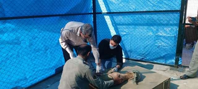 عملکرد بانک ژن اداره کل حفاظت محیط زیست  استان بوشهر