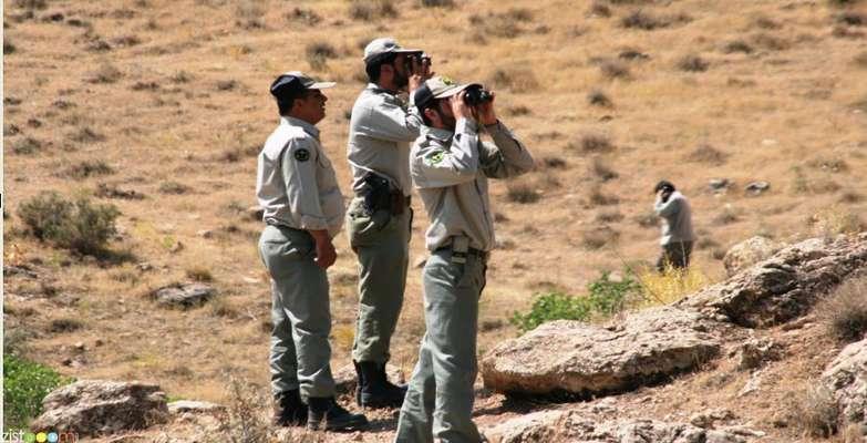 دستگیری ۲۰۸ متخلف زیست محیطی در استان بوشهر