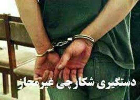 دستگیری شکارچی بی رحم پرندگان وحشی در قزوین
