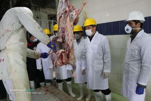 کشتارگاه صنعتی شهرداری تبریز با تمام توان فعال است