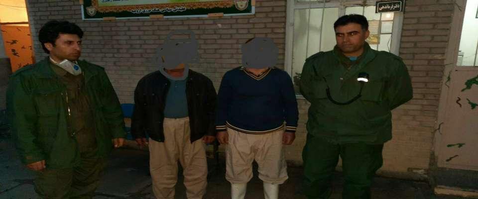 عوامل کشتار خرس قهوه ای در ارومیه شناسایی و دستگیر شدند
