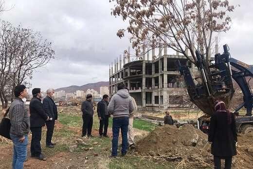 درختان واقع در مسیر پروژه اتصال ۲۴ متری شهدای بارنج به بزرگراه دو کمال جابهجا شدند