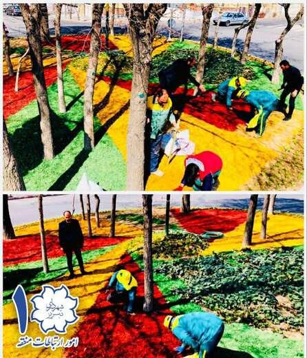 اجرای طرح های زیباسازی رفوژها و میادین توسط تراشه رنگی چوب های هرس شده درختان