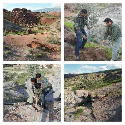 رفع تصرف بیش از ۹۵۰۰ متر مربع  از اراضی ملی منطقه حفاظت شده طارم سفلی