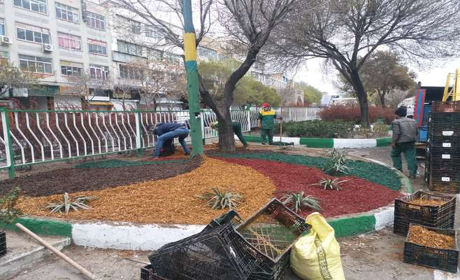 زیباسازی فضای سبز بلوار جمهوری با تراشه های رنگی چوب