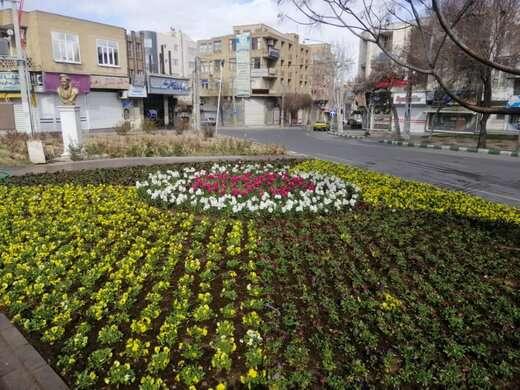 پارک های مسافر، مشروطه و منظریه گلکاری شد