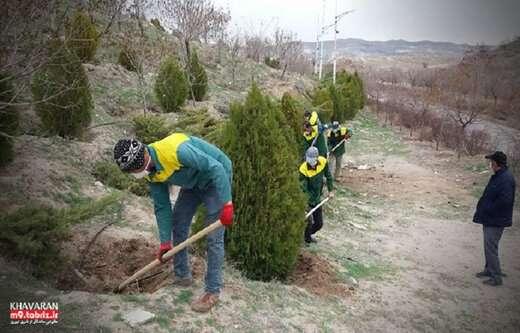 ایجاد تشتک پای درختان در فضای سبز شهرک خاوران و تفرجگاه ائل باغی