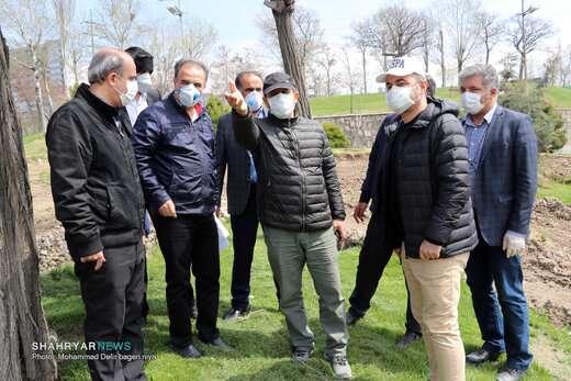 بازدید شهردار از پل همسان کابلی