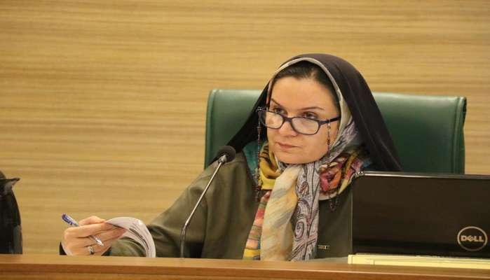 رئیس کمیسیون هوشمندسازی شورای شهر شیراز: مشکلات پروژه فیبر نوری شیراز را پیگیری میکنیم