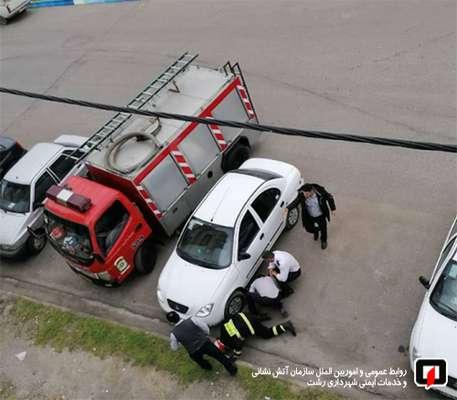 نجات قلاده سگ در شهرک فرهنگیان رشت توسط تیم نجات آتش نشانان/ آتش نشانی رشت