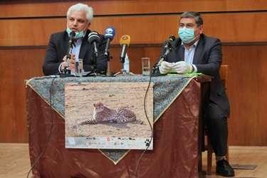 استفاده از توان و ظرفيت متخصصان ايراني براي حفظ يوزپلنگ آسيايي