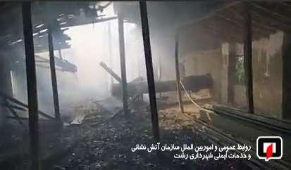 آتش زدن علفزار ها آتش را به جان ساختمان مرغداری انداخت/ آتش نشانی رشت