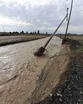 220 میلیارد ریال به شبکه توزیع برق خراسان رضوی خسارت وارد شد