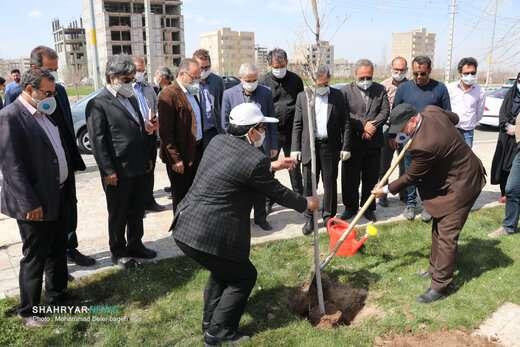 آغاز غرس یک میلیون نهال در سطح شهر تبریز