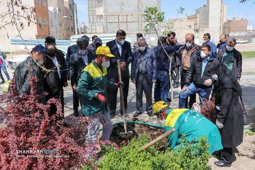 آغاز غرس یک میلیون نهال در سطح شهر تبریز/ فعالیت مدیریت شهری تعطیلناپذیر است