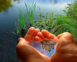 نقش آفرینی همگانی، راه حل رفع چالش های حفاظت از منابع آب یزد