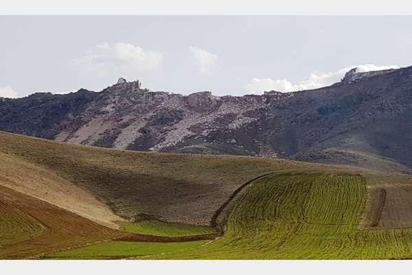 هر گونه واگذاری اراضی در مناطق تحت مدیریت حفاظت محیط زیست استان کرمانشاه ممنوع است