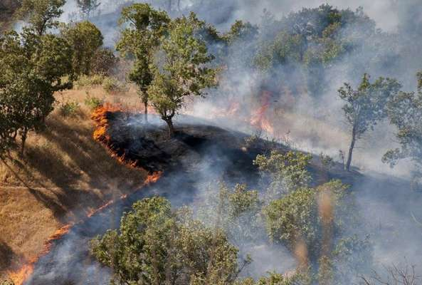 خطر آتش سوزي در مناطق چهارگانه / آماده باش محيط بانان