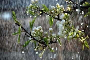 شنبه سامانه جدید بارشی وارد کشور میشود