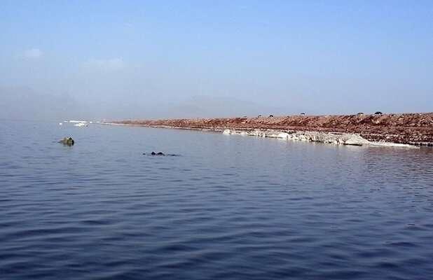 اقدامات انجام شده در دریاچه ارومیه الهامبخش است