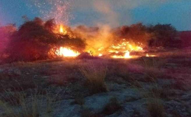 مهار آتش سوزی در پارک ملی دریایی نایبند