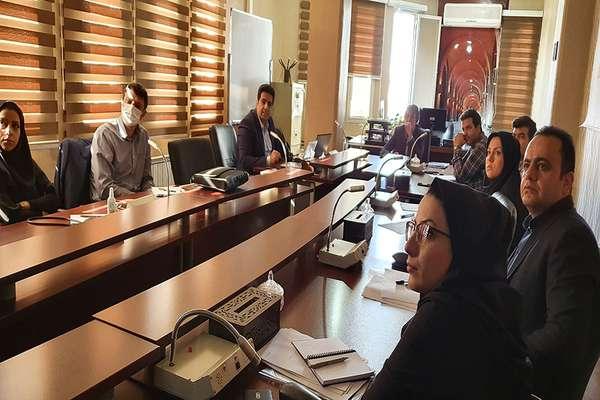 برگزاری جلسه کارشناسی پروژه سرمایهگذاری شاتل برای تکمیل بستر فیبر نوری