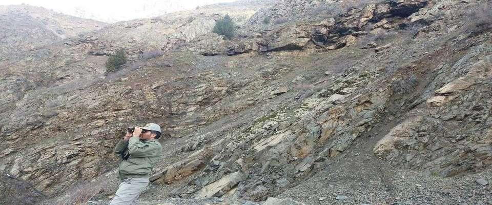 تشکیل ۱۹ پرونده تخلف محیط زیستی در استان قزوین