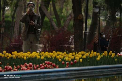 پیشبینی جو پایدار در آذربایجان شرقی
