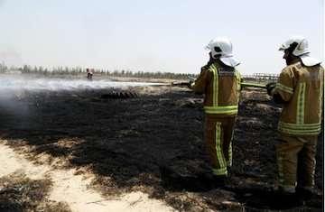 آتش سوزی علفزار اراضی شمالی شهر فرودگاهی امام خمینی(ره) مهار شد