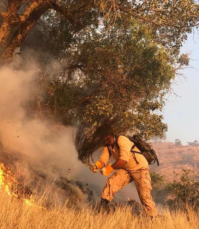 آتش در خائیز از کنترل خارج شد / استاندار فرماندهی عملیات مهار آتش را به دست گرفت