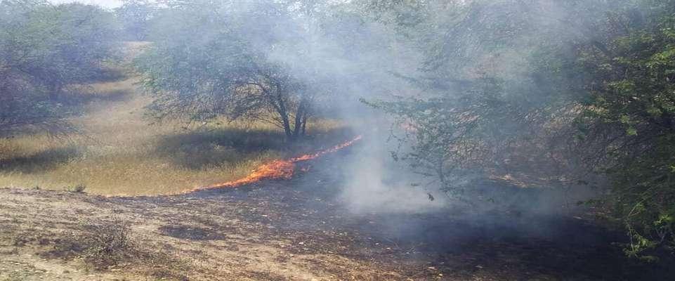 آتشسوزی جنگل خسرج مهار شد/اعلام آماده باش به یگان ارتش حمیدیه و هلال احمر