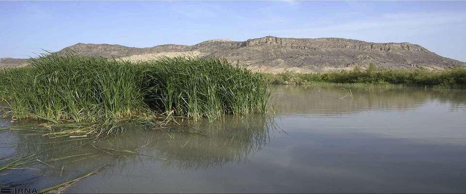مدیر ملی پروژه ارتقای مدیریت جامع منابع طبیعی تالاب هامون معرفی شد