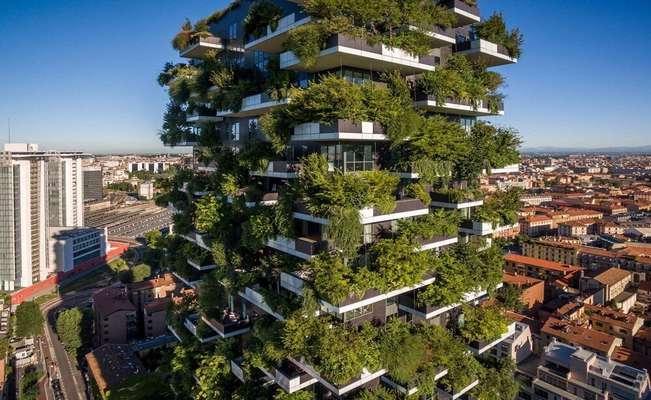 بام ساختمانهاي شهر سبز ميشود؟