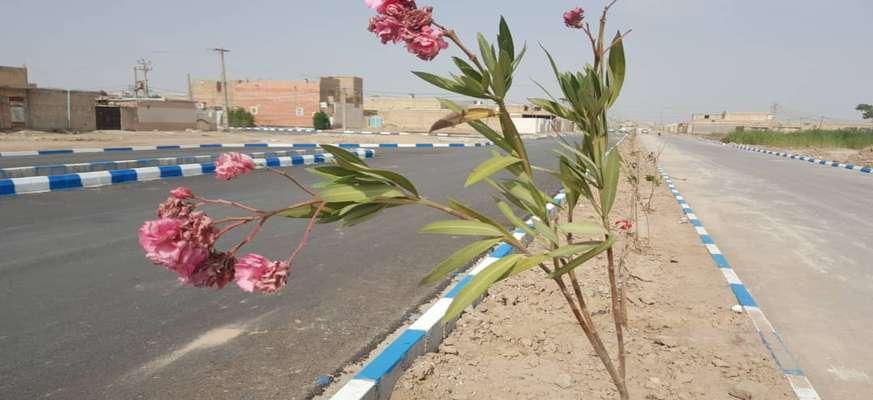 شهردار خرمشهر از کاشت ۴۰۰ نهال در بلوار جدیدالاحداث کوی نودهکتاری به طول ۱۲۰۰ متر خبر داد