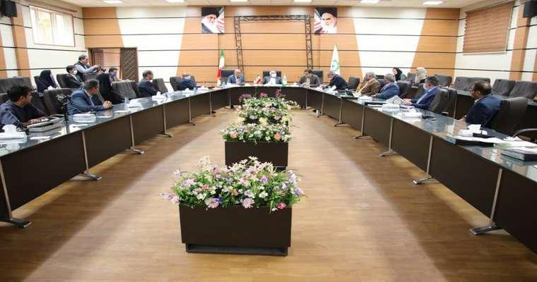 در نشست عمومی شورای اسلامی شهر کرمان تاکید شد؛  اتمام اصولی پروژه بهسازی میدان شهدا
