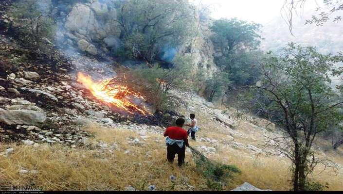 گفتوگو با عیسی کلانتری در روند خاموشسازی آتش جنگلها: بالگردها نقش موثری در خاموشسازی آتش ندارند