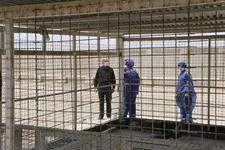 بازدید محمد جعفر فلسفی از مرکز عقیم سازی و کنترل سگ های بلاصاحب شهرداری اهواز