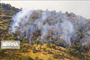 نقطه پایان سریال آتشسوزی در عرصههای طبیعی و جنگلها کجاست؟