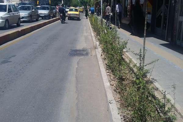 فضای سبز حاشیه خیابان آیت ا... طالقانی واکاری شد