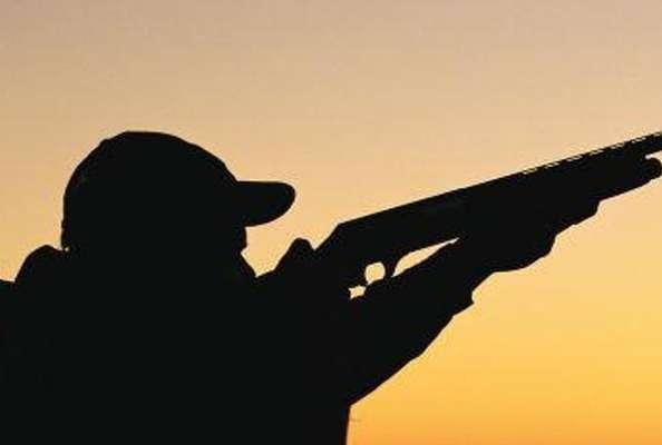 تیر شکارچی این بار بر بدن رییس اداره محیط زیست سروستان