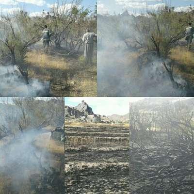 مزارع خاکشیر و گندم در دهستان براکوه طعمه حریق شد