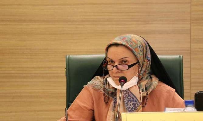 رییس کمیسیون هوشمندسازی شورای شهر شیراز: 30 هزار کارت شهروندی جدید در اختیار شهروندان قرار میگیرد